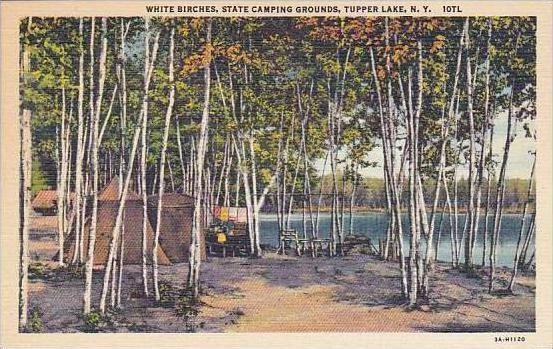 New York Tupper Lake White Birches State Camping Grounds