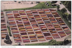 Airview Of Nelis Tulip Farm Holland Michigan