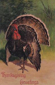 PFB Serie 7721 Thanksgiving Greetings Turkey Embossed