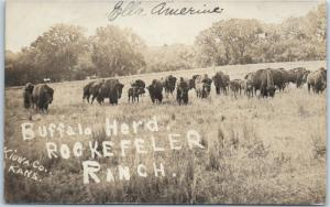 1908 Kiowa County, Kansas RPPC Photo Postcard Buffalo Herd ROCKEFELLER RANCH