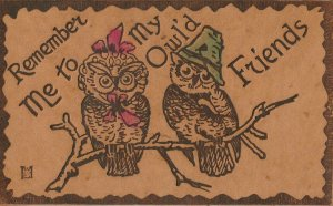 Comic Pun~Remember Me to My Owl'd Friends~Dressed Owls~1905 Leather Postcard