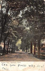 Stamford Connecticut~Clinton Avenue Homes~Tree Lined Dirt Road~1906 Postcard