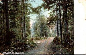 Maine Pemaquid Wood Paths