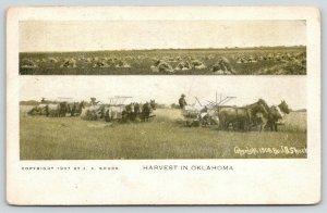 Woodward OK Cancel~Harvest~Farmers Horse Threshing~Look Land Agent~JA Shuck 1908