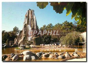 Postcard Modern Zoo of Palmlyre The rock and the Flamingos