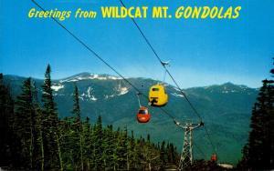 New Hampshire Jackson Pinkham Notch Greetings From Wildcat Mountain Gondolas