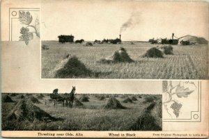 Vtg Postcard - Olds Alberta Canada Lewis Rice Photo Threshing Farm Steam Tractor