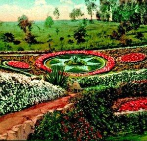 Los Angeles California CA Flower Beds at Elysian Park 1910 Vtg Postcard Mitchell