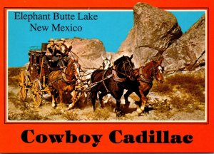 New Mexico Elephant Butte Lake Cowboy Cadillac Stagecoach