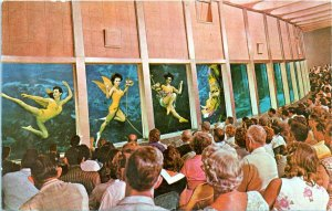 Weeki Wachee Florida Postcard 1970 Florida Mermaids Chrome MP