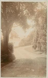 Aberystwyth-Snowdon-Carnavon UK Wooded Drive~Sepia Real Photo Postcard~ca 1922