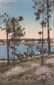 North Carolina Pinehurst Horseback Riders On Lakeside Bridle Path Handcolored...