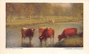 Summer Afternoon Cow Unused