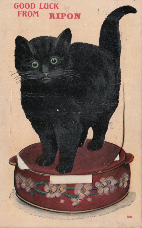 RIPON, England, 1917 ; Black Cat Pop-Out Greetings