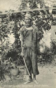 british guiana, GEORGETOWN, Native Street Sweeper (1910s)