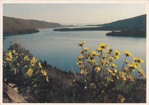 California Mammoth Lakes Grant Lake Reservoir