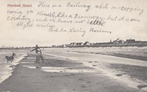 Dog Playing Fetch at Hornbaek Strad Denmark Old Postcard