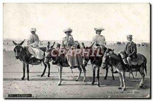 Old Postcard Donkey Mule A quartet