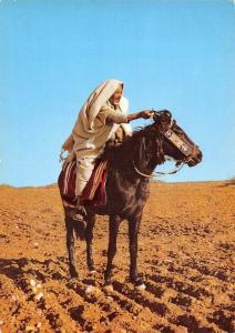 Libya Cavaliere Libico Libyan Horseman