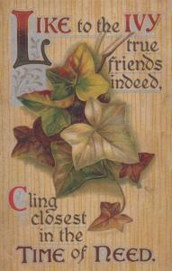 Like To The Ivy True Friends Cling Together Proverb Antique Friendship Postcard
