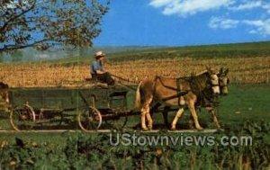 pa_qq_4009 - Amish Country, Pennsylvania