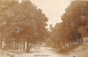 Salisbury Center NY Dirt Street View RPPC Postcard