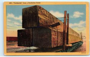 Giant Timbers Spruce Oregon Washington Sawed Trees Lumber Vintage Postcard D05