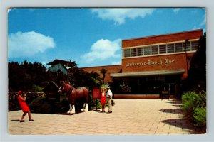Tampa FL-Florida, Anheuser Busch Brewery, Tropical Gardens, Chromec1976Postcard