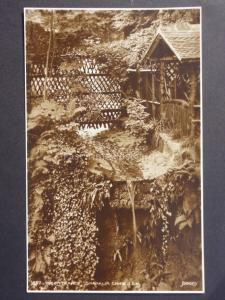 Isle of Wight: The Entrance to Shanklin Shine c1911 RP Postcard by Judges No.857