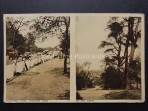 London: Hampstead Heath, Spaniards Road & On The Heath - Old Postcard