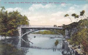 Connecticut New Haven Bridge Over mill River East Rock Park