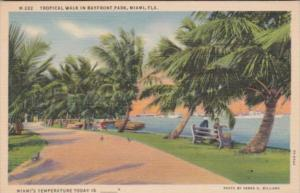 Florida Miami Tropical Walk In Bayfront Park Curteich