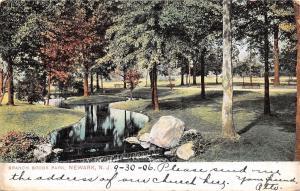 Newark New Jersey~Mill Race in Branch Brook Park~1906 Postcard