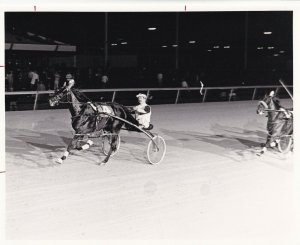 LIBERTY BELL PARK, Harness Horse Race, AMOROUS WILL wins, 1981