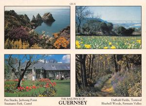 Guernsey Postcard Channel Islands Multi View by D.R Photography Ltd P12