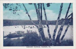 Pennsylvania Paupack Buehlers Idlewild