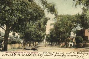 south africa, PORT ELIZABETH, Havelock Street looking Up (1904) Stamp