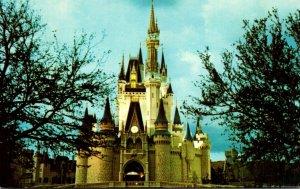 Florida Walt Disney World Fantasyland Cinderella Castle