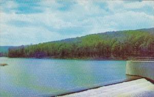 Pennsylvania Warren Chapman Dam