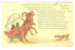 Zodiac : CAPRICORN, 00-10s Goat / Ram
