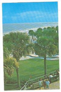 White Sandy Beach and Tropical Palms, Myrtle Beach,  South Carolina, 40-60s