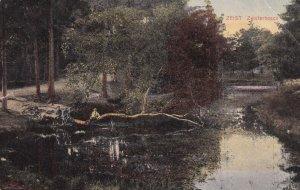 ZEIST, Utrecht, Netherlands, PU-1910; Zeisterbosch