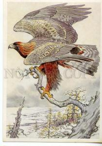 152978 Red List USSR Golden Eagle HUNT Old Russian PC