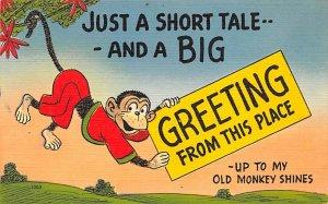 Monkey Post Card Greetings, Old Monkey Shines Unused