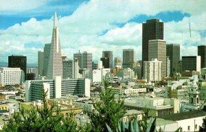 California San Francisco The Skyline