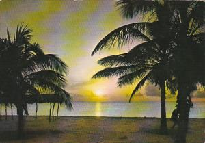 Venezuela Mar Caribe Sunset Beach Scene