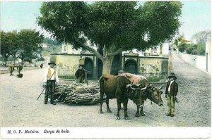 02398 ETHNIC vintage postcard: PORTUGAL - MADEIRA