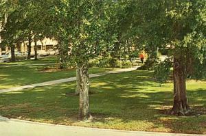 FL - Sebring, Circle Park