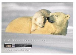Polar Bears Modern Advertising Postcard Arctic Wildlife