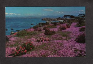 CA Lover's Point Pacific Grove Monterey California Postcard Flowers